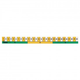Early Learning 30cm Rulers