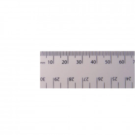 White Dead Length 30cm Rulers
