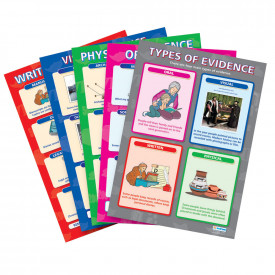 History Evidence Poster Set