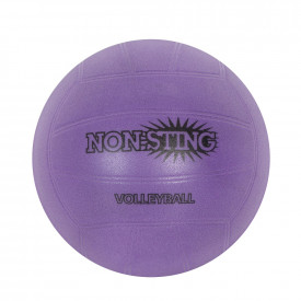 Non-Sting Volleyball